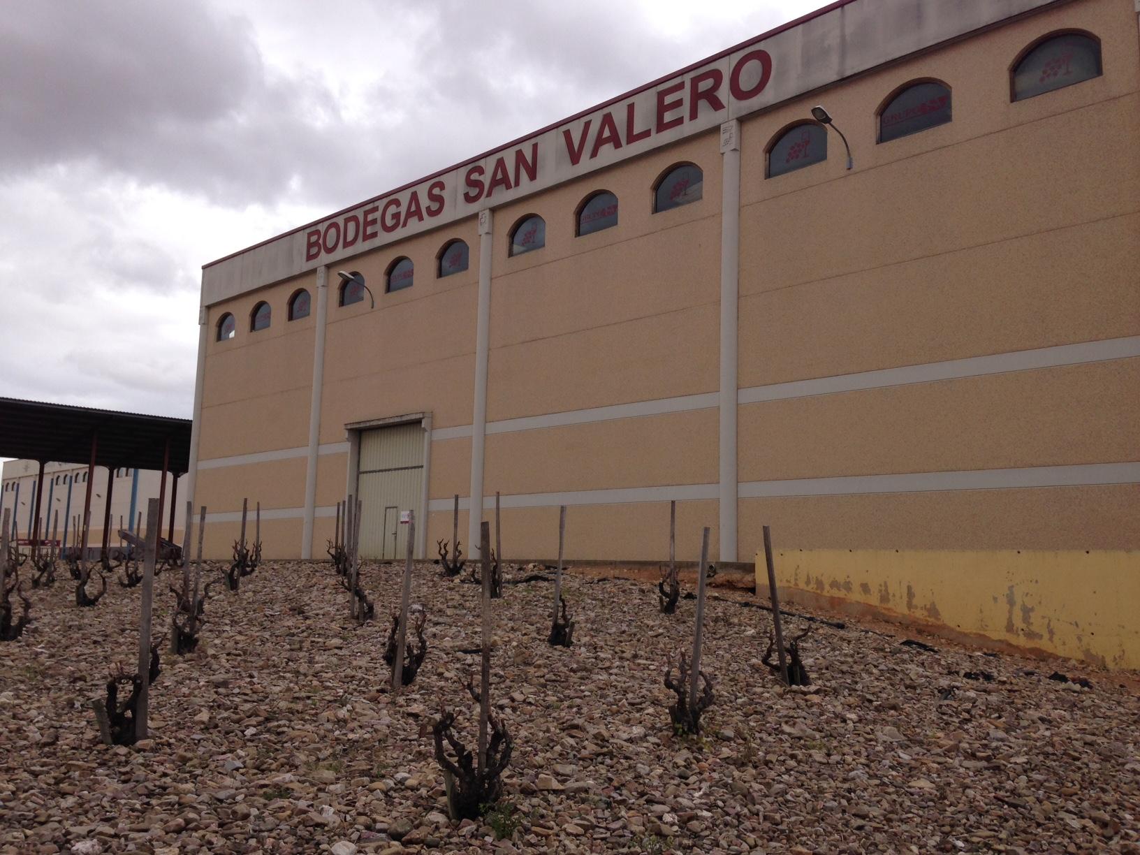 visitas a bodegas en semana santa-barrica creativa-san valero