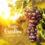 ¿Qué son las añadas de los vinos?